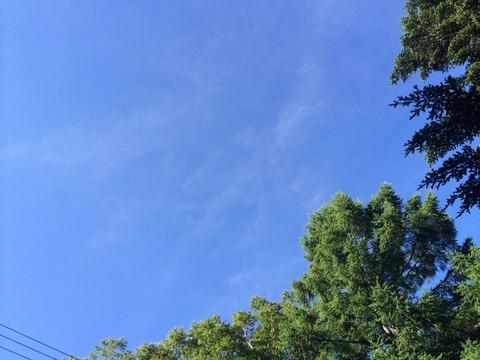 きれいな空