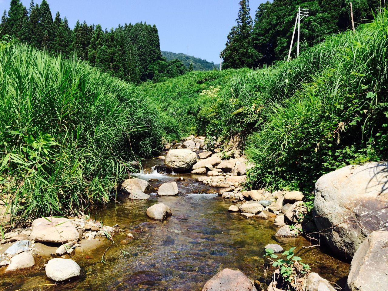 石打の小川