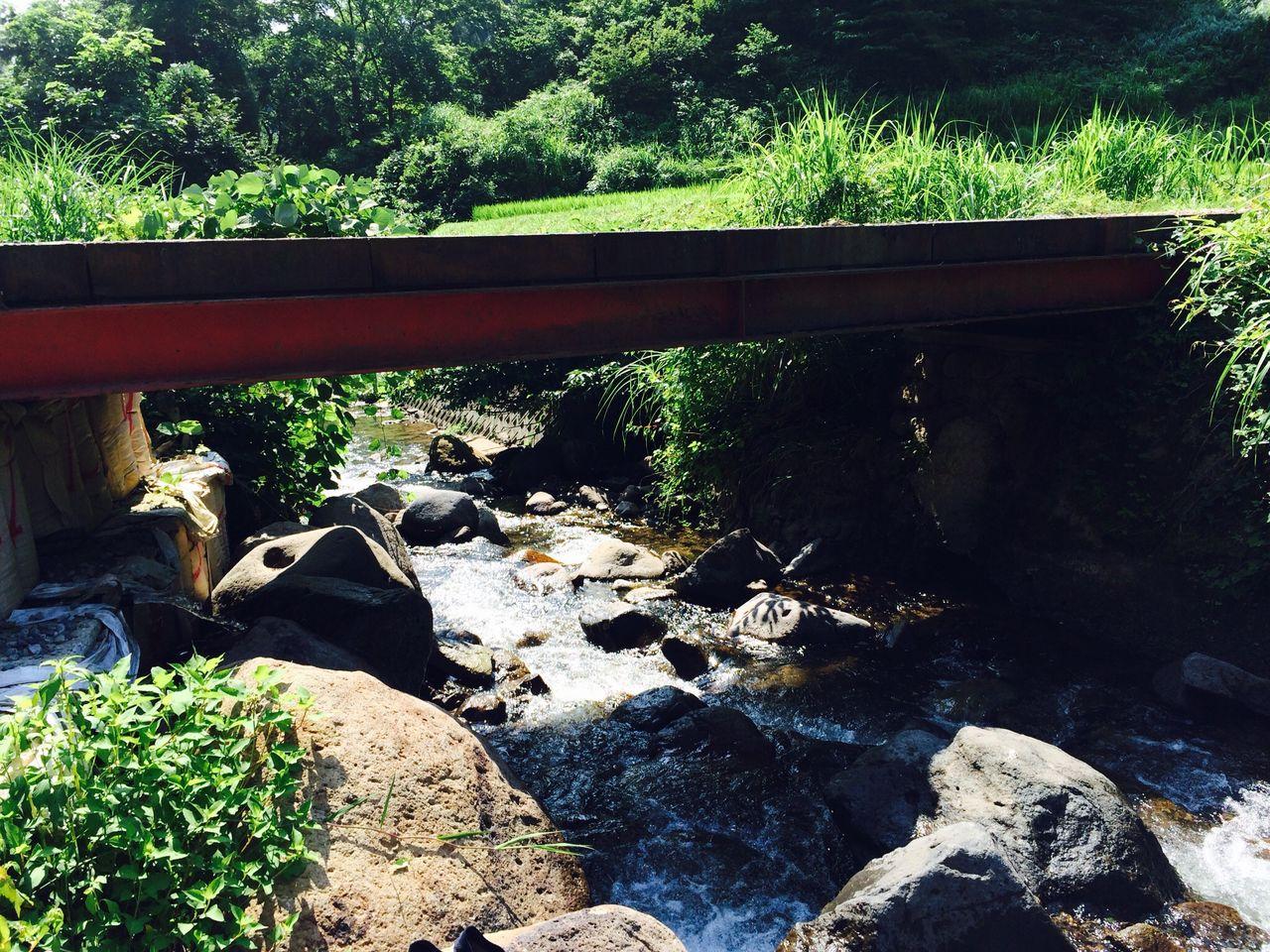 湯沢の小川2